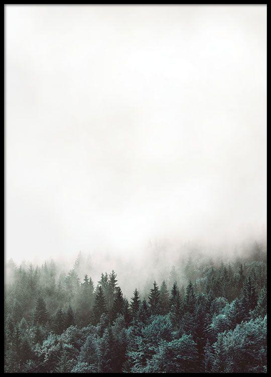 Fin poster med skog.