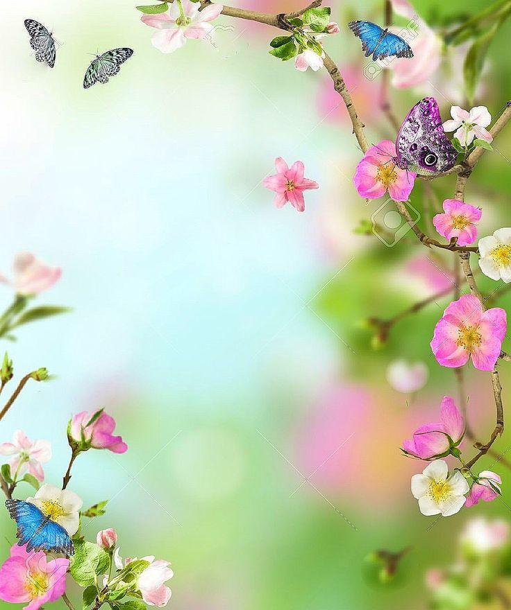 719 Best Borders, Floral Images On Pinterest