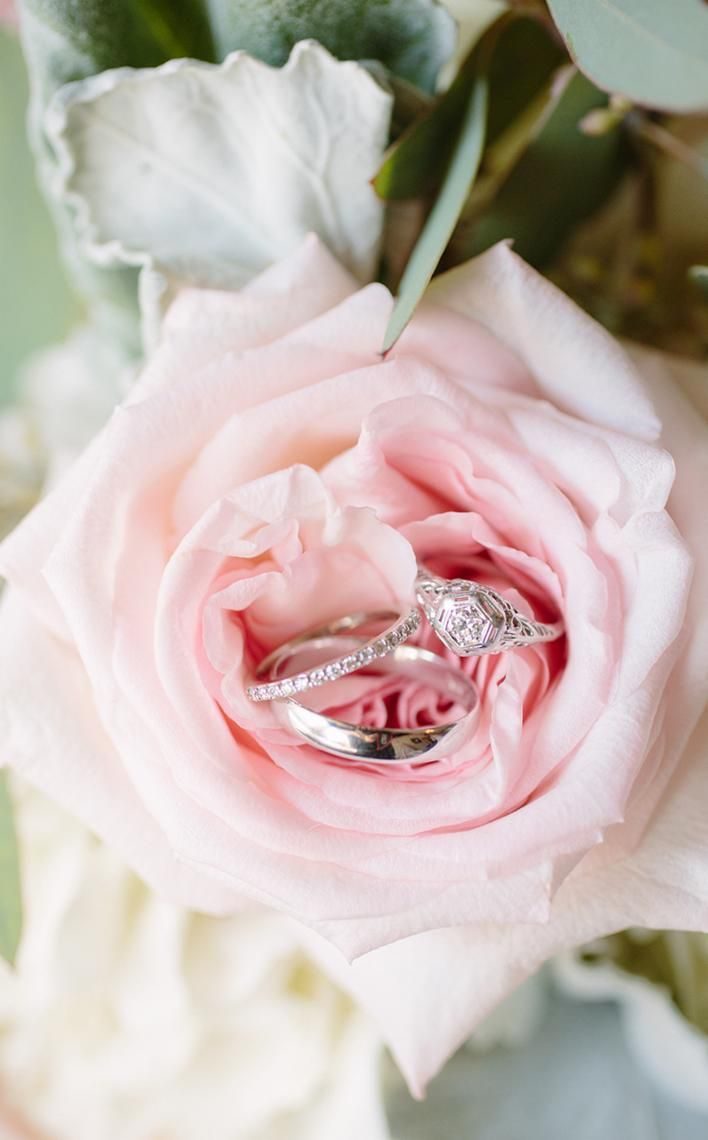Wedding rings | Wedding inspiration | Wedding photography | Wedding bands | Wedding photo ideas | Engagement ring | Garden roses | Garden rose | Rings
