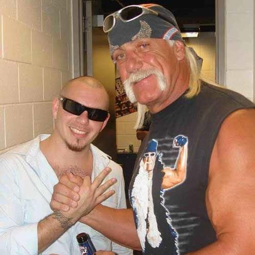 pitbull the singer pictures | Singer Pitbull Celebrity Handsome Man Hulk Hogan On Favimages