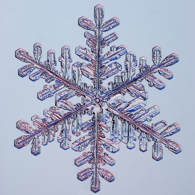 Snowflake fractals in nature