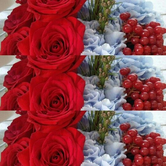 Red roses & blue hydrangeas, unusual but attractive combination of colors