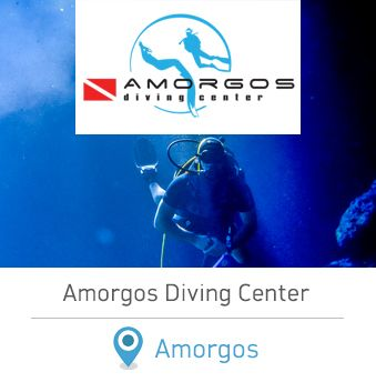 """Amorgos Diving Center. Scuba diving in Greece. Have you ever dream of exploring the magical waters of the """"Big Blue""""? Then put your wetsuit on and come to Amorgos Island for an unforgettable experience!  #scubadiving #greece #amorgos #dreamingreece #diving #dive #wateractivities #watersports #holidays #vacations #greekislands"""