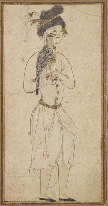 Youth holding a falcon ca. 1575-1580 Safavid period  Ink, opaque watercolor and gold on paper H: 16.6 W: 10.4 cm  Qazvin, Iran  Purchase--Smithsonian Unrestricted Trust Funds, Smithsonian Collections Acquisition Program, and Dr. Arthur M. Sackler S1986.313  Freer-Sackler   The Smithsonian's Museums of Asian Art