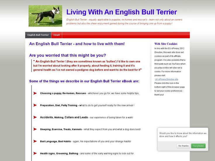 [Get] Learning To Live With An English Bull Terrier From Puppy To Adult - http://www.vnulab.be/lab-review/learning-to-live-with-an-english-bull-terrier-from-puppy-to-adult ,http://s.wordpress.com/mshots/v1/http%3A%2F%2Fforexrbot.reabis.hop.clickbank.net