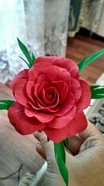Моя первая роза)