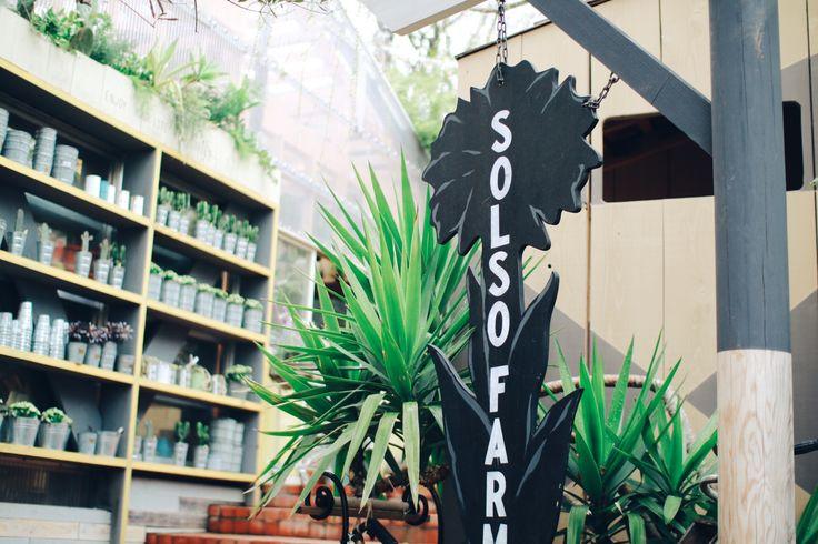 神奈川県の川崎市に、広大な敷地面積をもつオシャレで素敵なファームがあります。ソルソファームと名付けられたそのファームは、世界中から多種多様な植物が集められ、自由に伸び伸びと息をしている魅力的な場所。特に、これからの季節は植物が一番輝く季節。今までよりもさらに素敵なソルソファームの魅力をたっぷり紹介します。また、都内にある「SOLSO HOME(ソルソホーム)」、エスニック料理店「KiMiDORi(キミドリ)」についてもまとめてみました。