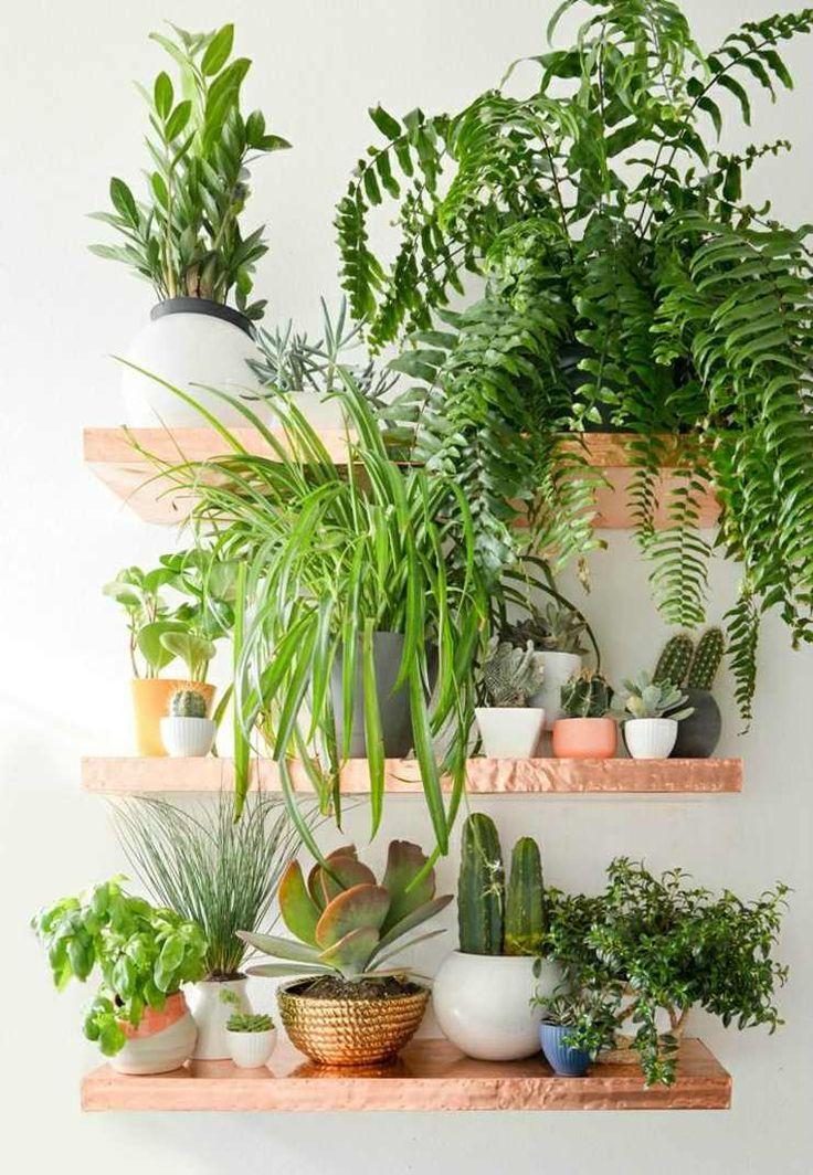 étagère flottante cuivrée pour les plantes vertes