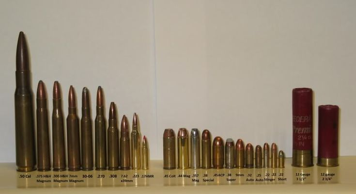 biggest bullet collection | It might be hard to read, so from left to right: