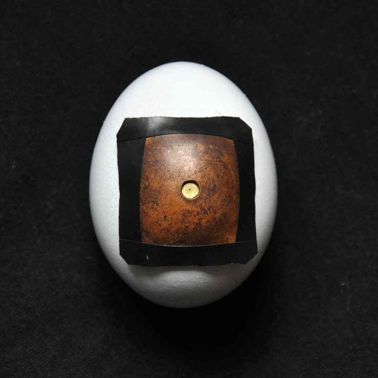 The Pinhegg – My Journey To Build An Egg Pinhole Camera · Lomography. Not exactly a Saturday afternoon make, but I love this idea from Francesco Capponi