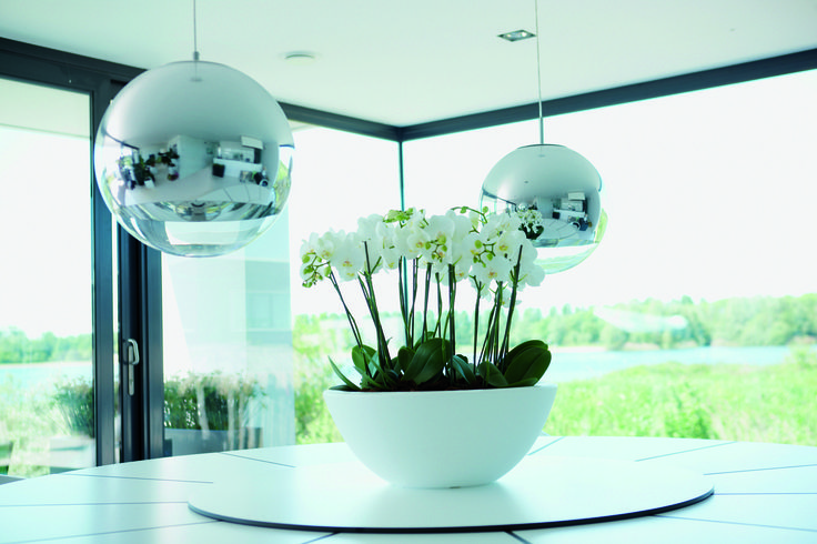 Beautiful bowl planter online at potstore.co.uk