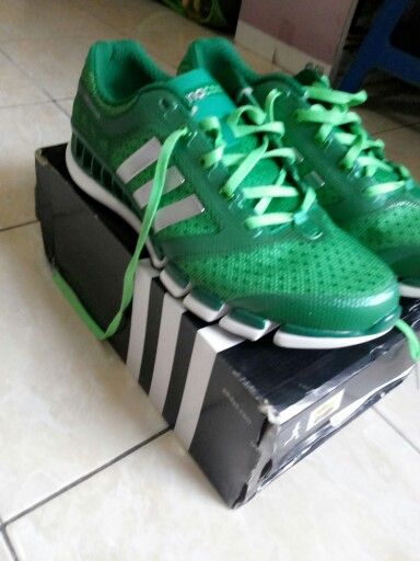 My adidas climacool for run