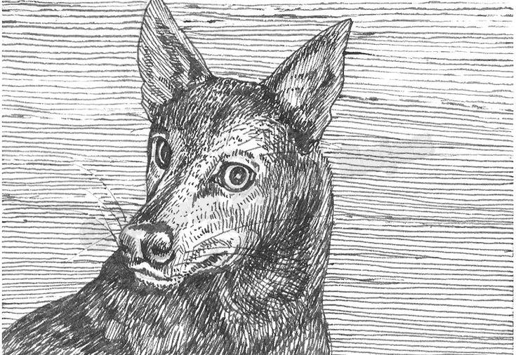 El perro pulgoso – Leyenda peruana http://www.encuentos.com/leyendas/el-perro-pulgoso-leyenda-peruana/