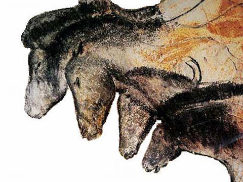 学のブログ-シャーベット洞窟 馬