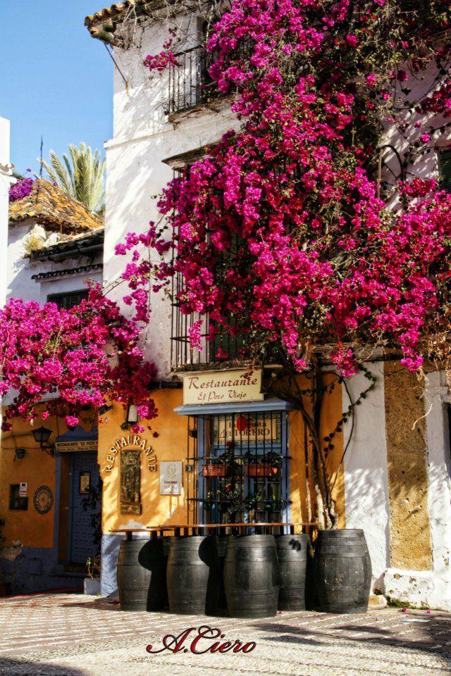 Marbella, Spain. Old town by A. Ciero