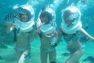 Bali Sea Walker Trip