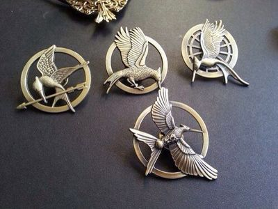 I NEED TO GET ALL OF THEM!!!!! I have the first one...need Catching Fire's and Mockingjay Part One and Two's.