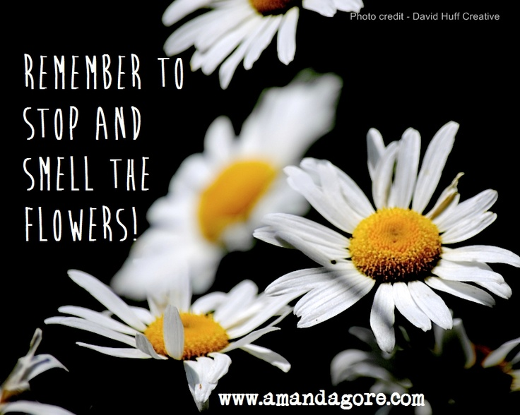 Remember To Stop And Smell The Flowers