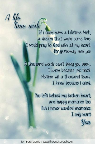 A lifetime wish...  #back #broken #cry #dream #god #heartbeat #lifetime #memories #poems #pray #tears #thousand #wish #words #yesterday #you  ©2016 The Gecko Said – Beautiful Quotes