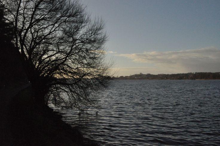 January 2015 - At Viborg