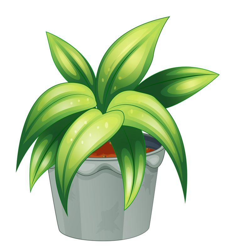 Flower Pot 59 Png My Cute Garden Pinterest Tr 228 D Och