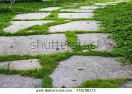 Image result for stone walkway