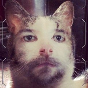 People Are Using The FaceFusion App To Turn Themselves Into Creepy Animal-Human Hybrids
