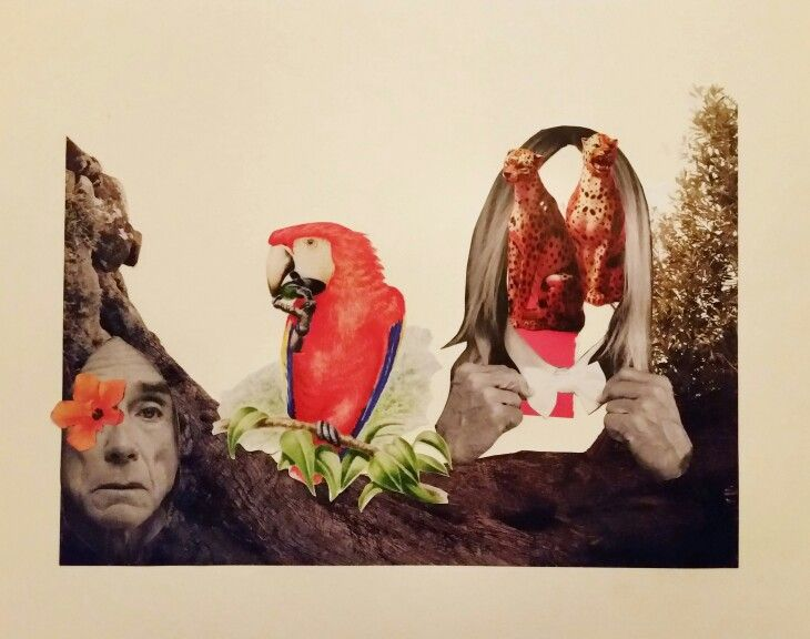 Iggy in the wild. Collage by Tina Nielsen.