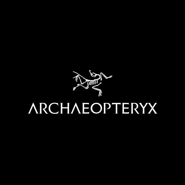 "'Today we have made a bold move into the future. With an obvious next step in our evolution as a globally recognized brand, we will official be leaving our shortened name behind. Effective immediately the company will be rebranded to the easier to spell and pronounce 'Archaeopteryx.'  There are no shortcuts in evolution.""   Press Release: http://blog.arcteryx.com/global-growth-prompts-rebrand"
