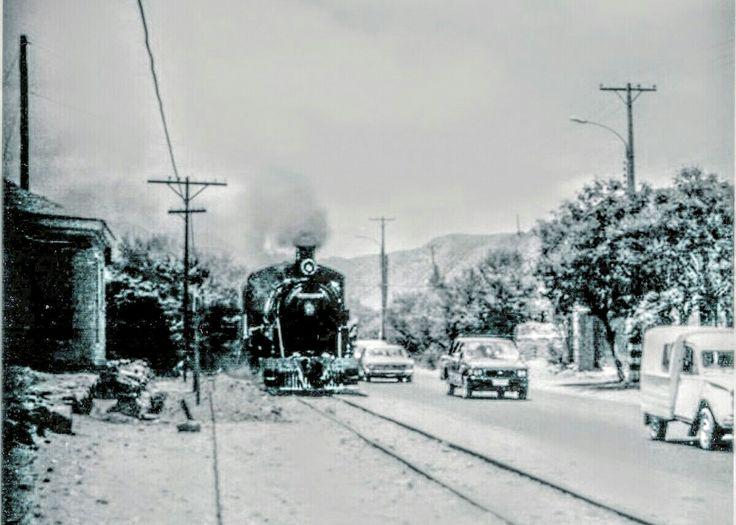 Tren pasando por Punta Negra.