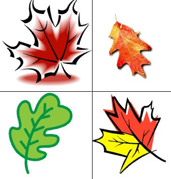 Leaf matching: A simple game to encourage matching colour recognition and turn-taking.