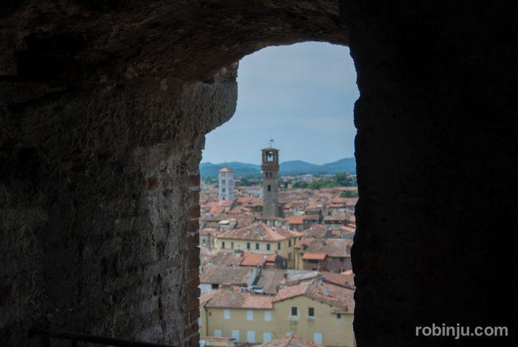 foto de La Torre Guinigi de Lucca Toscana Lucca Torres y Toscana