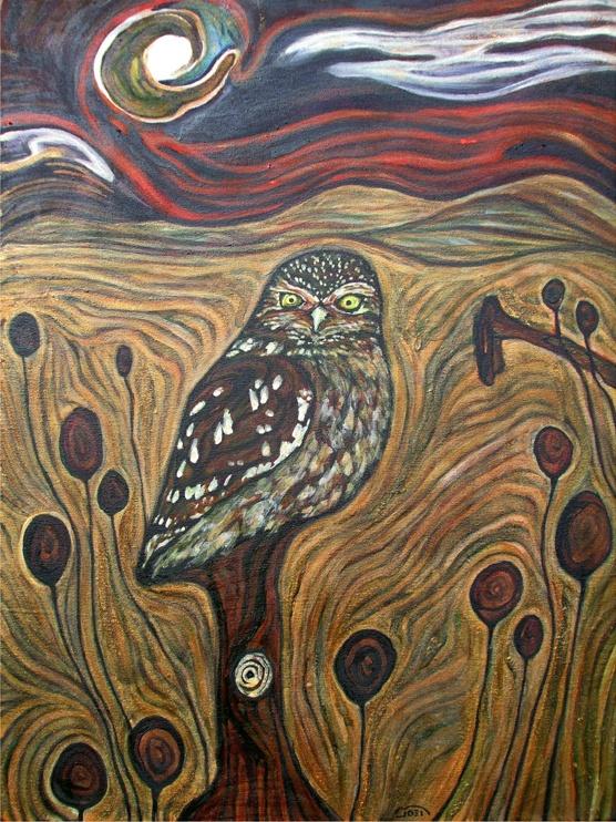 owl by Joel Bird