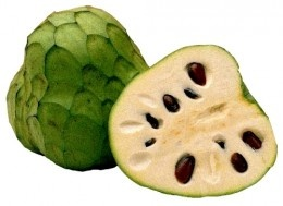 """Cherimoya or ice-cream fruit -  The name is derived from the Quechua word chirimuya, which means """"cold seeds."""" Cherimoyas originated in chilly high-altitude areas but are now cultivated throughout South America."""