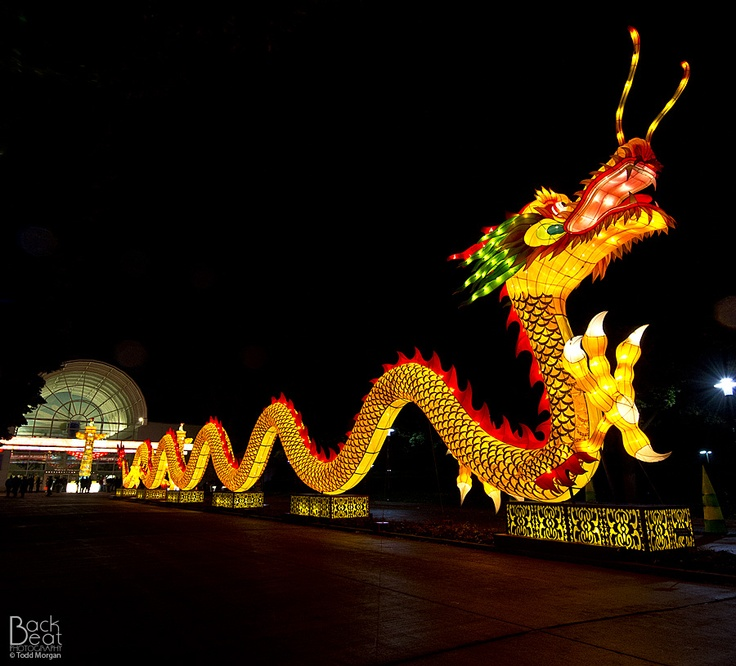 1000 images about missouri st louis attractions on Missouri botanical garden lantern festival