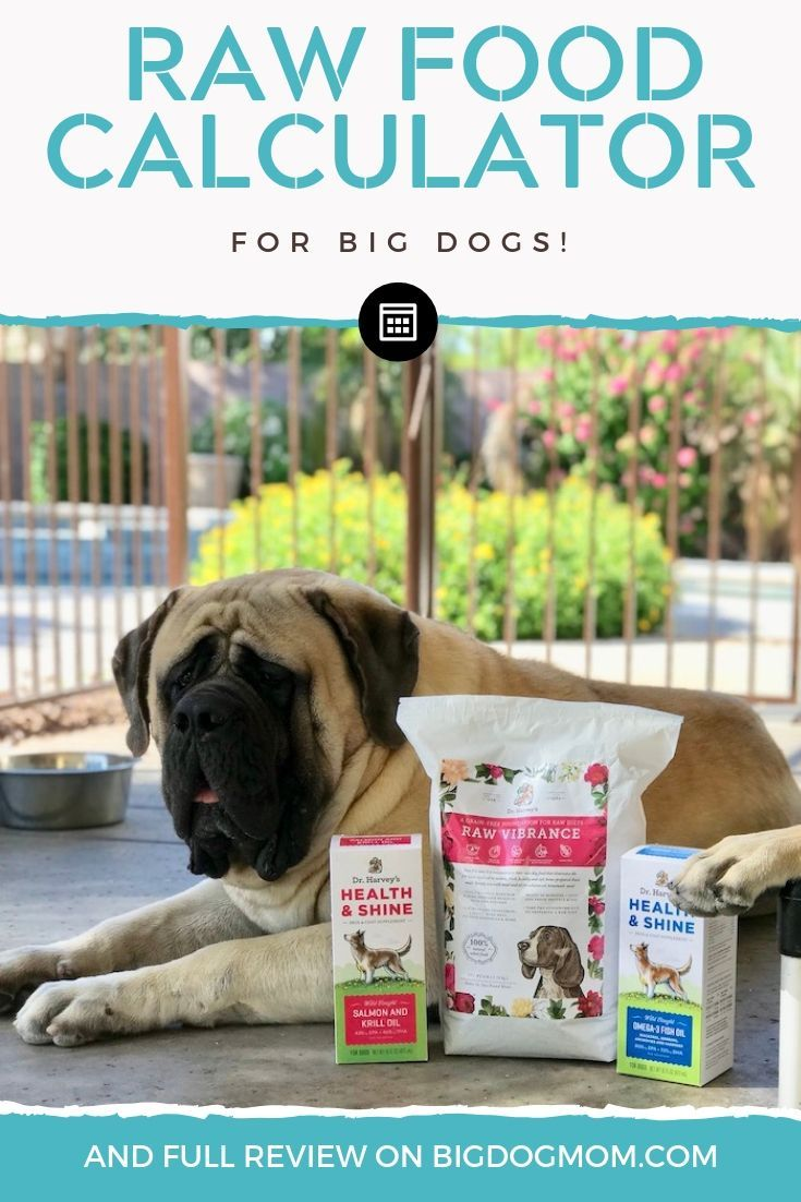 Dr Harvey S Raw Dog Food For Beginners And Big Dogs Facts
