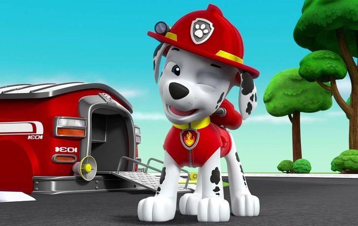 Marshall Paw patrol puppy - games, jigsaws, puzzles. Psi patrol piesek Marshall - odkryj puzzle z tej bajki