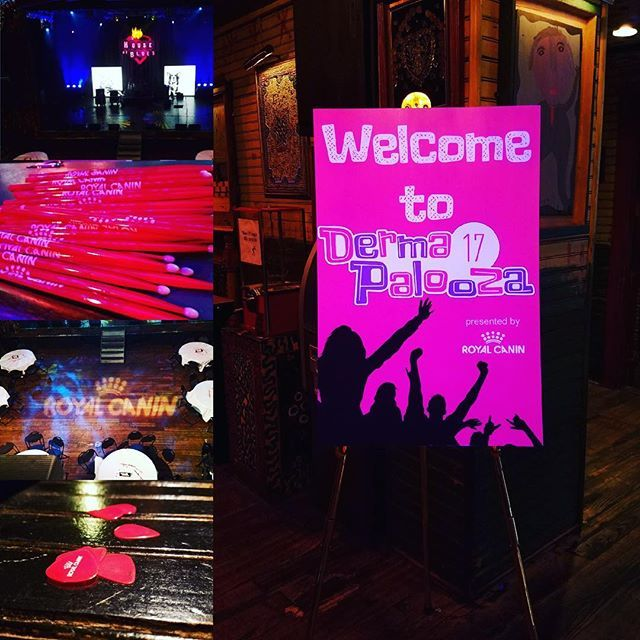 Our trade show team is back from the North American Veterinary Dermatology Forum @disneyscontemporaryresort in Orlando! @royalcaninus hosted the 2017 DermaPalooza at the @hoborlando on Friday night! The custom t-shirts, guitar picks and drumsticks turned out amazing! What a great and memorable night! #proplanit #navdf2017 #royalcanin #tradeshow #tradeshowmanagement #eventplanner #orlando #houseofblues @navdf #evedeso #eventdesignsource - posted by ProPlanit…