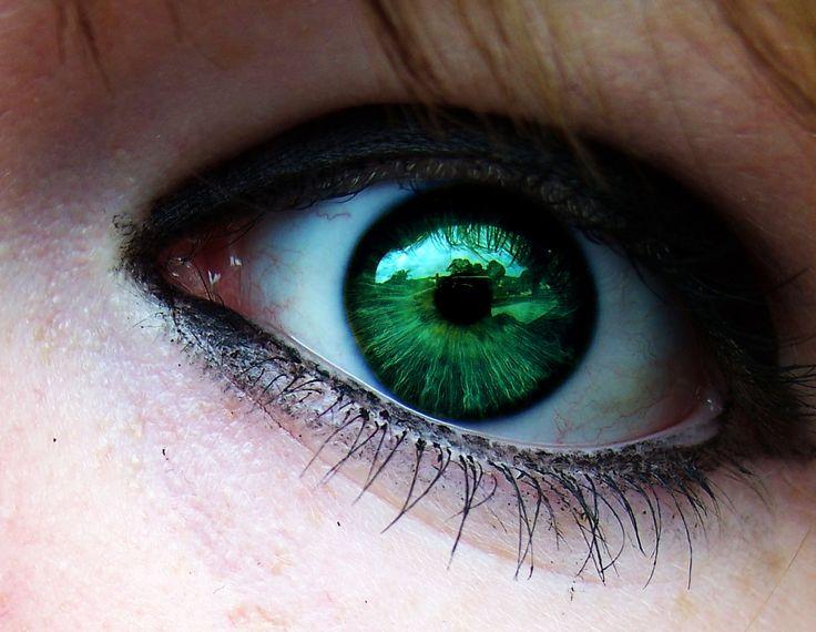 Dark Green Eye Contacts Best 25+ Blonde...