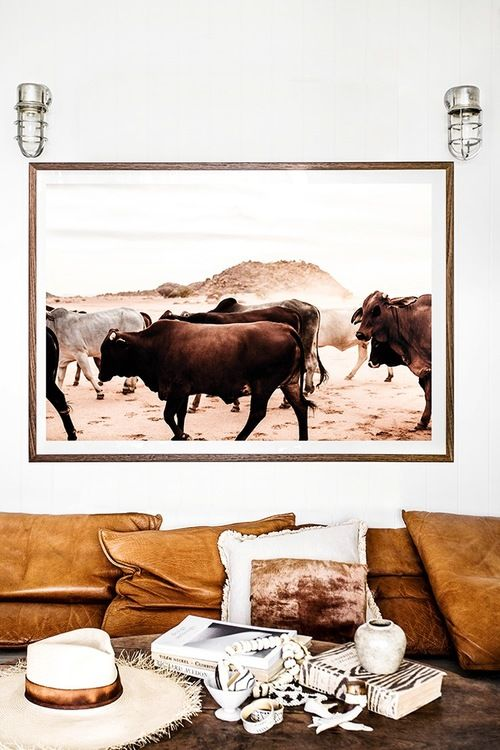 'Namibia Droving Cattle' Photographic Print by Kara Rosenlund. Hundreds of colourful cattle are droved through the desert of northern Namibia by the nomadic Himba tribes. The cattle are highly prized and the Himba count their wealth in the number of their cattle. © Kara Rosenlund  Shop here: http://shop.kararosenlund.com/namibia-droving-cattle-photographic-print/