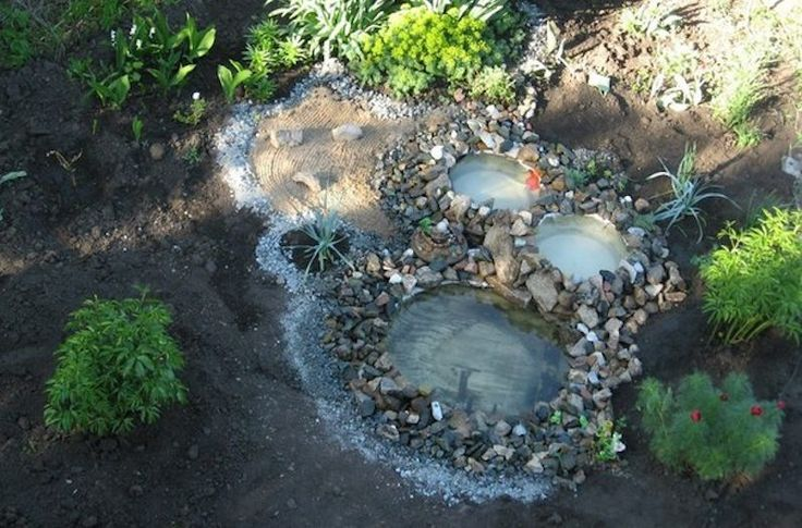 DIY tractor tire pond tractor tires is the perfect way to bring your backyard to life. http://www.wideopencountry.com/this-breathtaking-pond-was-made-using-tractor-tires/