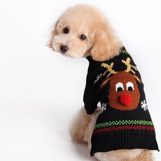 Patgoal Pet Christmas Holiday Cartoon Reindeer Knitted Sweater for Small Dog >>> You can get more details here   Christmas for Cats