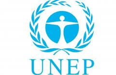Programme Management Officer P4 job in Nairobi Kenya  NGO Job Vacancy   Org. Setting and Reporting The United Nations Environment Programme (UNEP) is the leading global environmental authority that sets the global environmental agenda promotes the coherent implementation of the environmental dimension of sustainable de... If interested in this job click the link bellow.Apply to JobView more detail... #UNJobs#NGOJobs