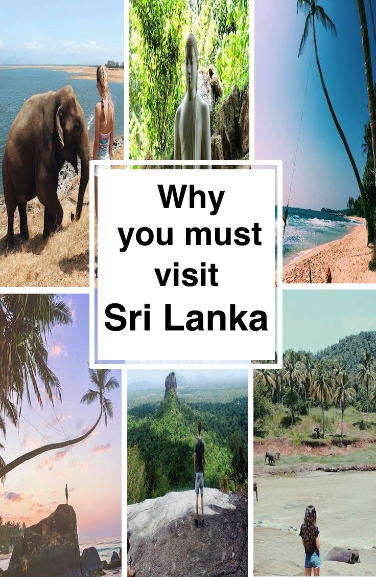 Why you must visit Sri Lanka