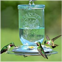 Perky-Pet® Mason Jar Glass Hummingbird Feeder, Model #785 | Birdfeeders.com - Seriously love this and love that it is a Mason Jar!  So CUTE!!!