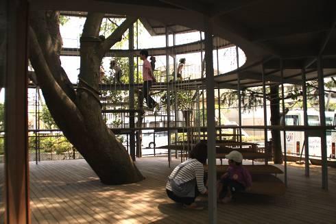 """Ring Around a Tree"": extension for a kindergarten in Tokyo - Livegreen Blog"