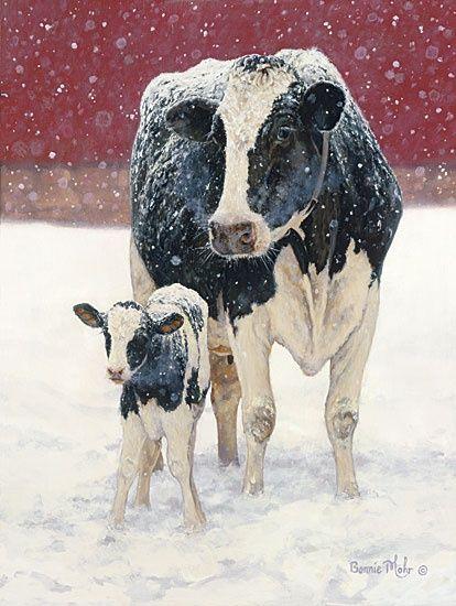 mother & calf in snow ( #animals #farm #cows ) ✌eace | H U M A N™ | нυмanACOUSTICS™ | н2TV™