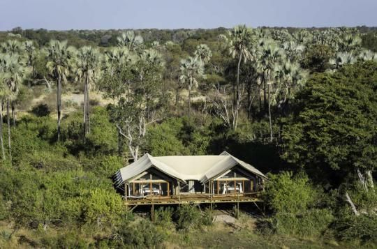 Tent from above at Tubu Tree Camp (Okavango Delta, Botswana). If that looks like a place you wanna go to - just let us know: info@gondwanatoursandsafaris.com