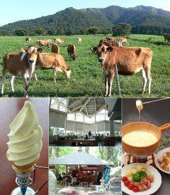 ひるぜん ジャージーランドに遊びに行こう のんびり ゆったり自然の中でジャージー牛とふれあえて美味しいものが食べれるよ 今の季節ひまわりが見頃です それから8月中旬まで茶店涼水亭でそうめん流しも楽しめますよ  詳細は公式HPをご覧ください http://ift.tt/1rLPJdq tags[岡山県]