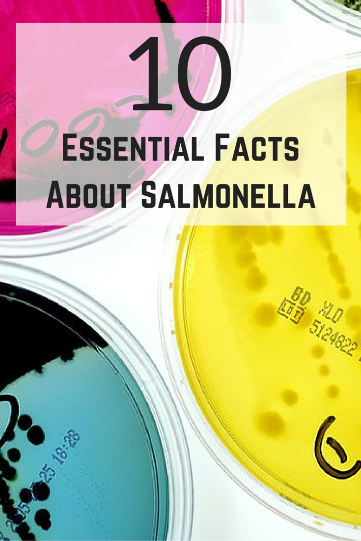 """Following a possible contamination of one lot of """"Trader Joe's Raw Cashew Pieces"""" with salmonella, the grocery store has pulled the products from its shelves. Here's what you need to know about this bacteria, and what to do if you get it. #healthnews #salmonella #foodpoisoning #everydayhealth 